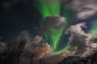 Aurora Boreale in Norvegia 1
